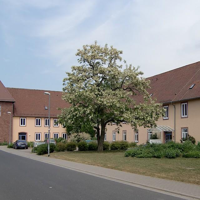 Bild von Wertheim